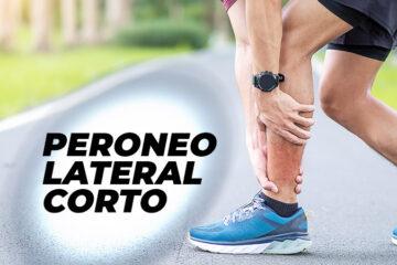 peroneo-lateral-corto