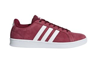 adidas neo CF ADVANTAGE BURDEOS DB0417