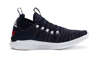 Puma IGNITE FLASH DAUNT BLEU MARINE 191672 09 09