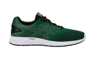 ASICS PATRIOT 10 VERDE 1011A131 300
