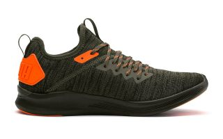 Puma IGNITE FLASH EVOKNIT UNREST VERT ORANGE 191593 02