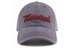 TIMBERLAND CASQUETTE BASEBALL GRIS