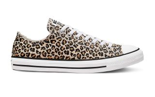 Converse CHUCK TAYLOR ALL STAR LEOPARD LOW TOP PRINT DONNA