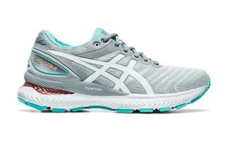 Asics GEL NIMBUS 22 GREY WHITE WOMEN