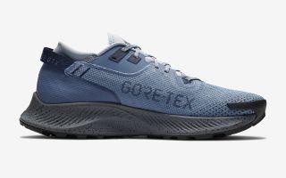 Nike NIKE PEGASUS TRAIL 2 GORE-TEX CU2016 400