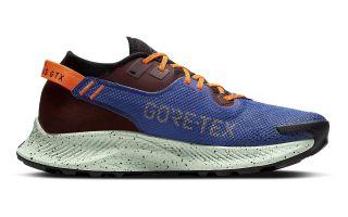 Nike PEGASUS TRAIL 2 GORE-TEX BLU NERO ARANCIONE