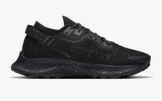 Nike PEGASUS TRAIL 2 GORE-TEX  NEGRO GRIS MUJER CU2018 001