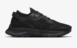 Nike PEGASUS TRAIL 2 GORE-TEX BLACK GREY WOMEN