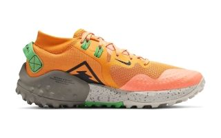Nike WILDHORSE 6 ORANGE VERT BV7106 800