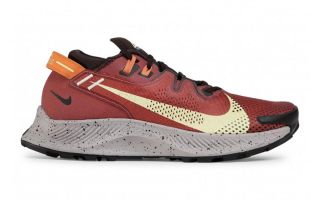 Nike PEGASUS TRAIL 2 ROJO VINO CK4305 600