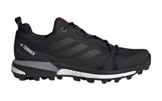 adidas TERREX SKYCHASER LT GTX CARBON BLACK FOR WOMEN