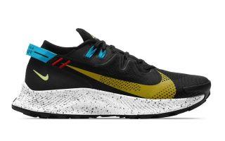 Nike NIKE PEGASUS TRAIL 2 NEGRO CK4305
