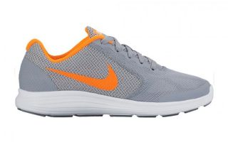 NIKE REVOLUTION 3 JUNIOR GRIS 819413 005